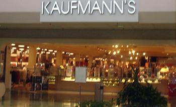 Kaufmanns2